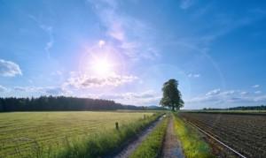 LIFE, subvenciones que dan vida a tus proyectos medioambientales